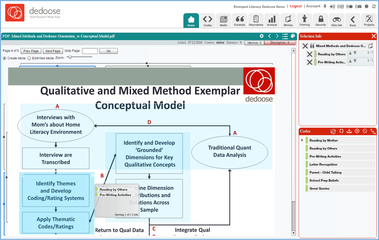 Screenshot of Dedoose PDF Functionality