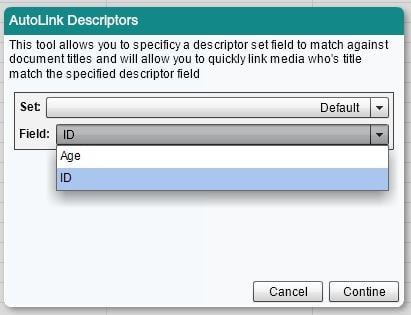 Auto Link Descriptor Panel